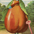 How Do I A Pear by Aged Pixel