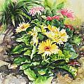The Garden Rule by Barbara Bullard