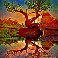 How One Tree Becomes Two by Tara Turner