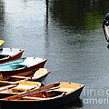 Hoyt Lakes Rowboats In Delaware Park Buffalo Ny Oil Painting Effect by Rose Santuci-Sofranko