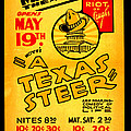 Hoyts A Texas Steer by Unknown