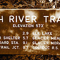 Olympic Hoh River Trail Sign by David Lee Thompson