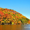 Hudson River Fall Foliage by Regina Geoghan