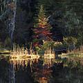Huff Lake Reflection by Paul DeRocker