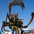Huge Metal Crab by Brenda Kean