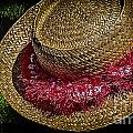 Hula Hats 5 by Charles Davis