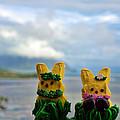 Hula Peeps At Kaneohe Bay by Dan McManus