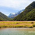 Humboldt Mountains Seen From Routeburn Track Nz by Stephan Pietzko