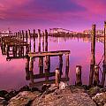 Humboldt Twilight Glow by Greg Nyquist