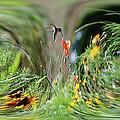 Humming Bird Digital Art by Thomas Woolworth