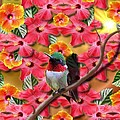 Hummingbird And Hibiscus by Edmond Hogge