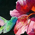Hummingbird And Hibiscus by Robert Hooper