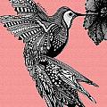 Hummingbird Flight 18 by Karen Larter