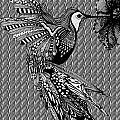 Hummingbird Flight 20 by Karen Larter