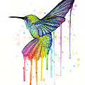 Hummingbird Of Watercolor Rainbow by Olga Shvartsur