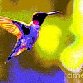 Hummingbird by Randy J Heath