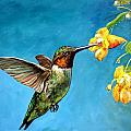 Hummingbird With Yellow Flowers by Dottie Dracos