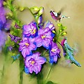 Hummingbirds Butterflies And Flowers by Susanna Katherine
