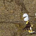 Humpty Dumpty by Angus Hooper Iii