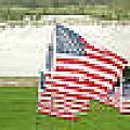 Hundreds Of American Flags September 11 Memorial In Saint Louis Missouri by Adam Long