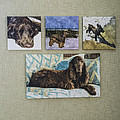 Shown Hung On Wall - Grouping From Dogs Gallery by Susan Molnar