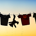 Hung Out To Dry by Tim Gainey