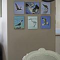 Shown Hung On Wall - Various Bird Prints by Susan Molnar
