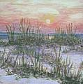 Hunting Island Sea Oats by Carol Luzzi