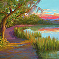 Hunting Island Sunset by Audrey McLeod