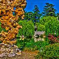 Huntington Gardens Ca by Richard J Cassato
