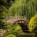 Huntington Japanese Garden No 3 by Belinda Greb