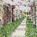 Huntington Rose Arbor by David Lloyd Glover