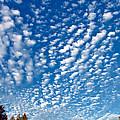 Huron Sky 4 by Steve Harrington