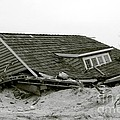 Hurricane - Sandy - Storm by Susan Carella