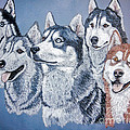 Huskies By J. Belter Garfunkel by Sheldon Kralstein