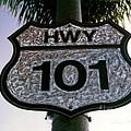 Hwy 101 by Glenn McNary