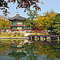 Hyangwonjeong Pavilion In Autumn by Tony Crehan