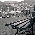 Hydra Black And White by Alexandros Daskalakis