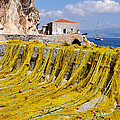 Hydra Island by George Atsametakis