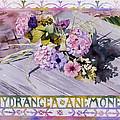 Hydrangea Anemones by Julia Rowntree