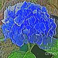 Hydrangea Blues by Luther Fine Art