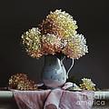 Hydrangea by Lawrence Preston
