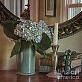 Hydrangea Still-life by Terry Rowe