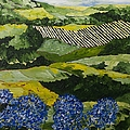 Hydrangea Valley by Allan P Friedlander