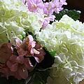 Hydrangeas Bouquet by Carol Groenen