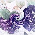 Hydrangeas by Cindy McClung