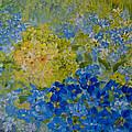 Hydrangeas by Joanne Smoley