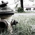Hydrant by Robin Mahboeb