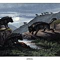 Hyena by Splendid Art Prints