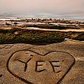 I Heart Yee by Peter Tellone